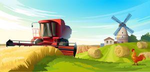 Ano ang Agrikultura?